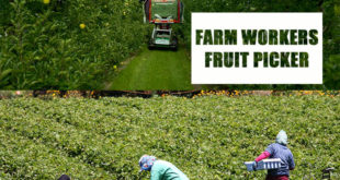 farm workers in Canada